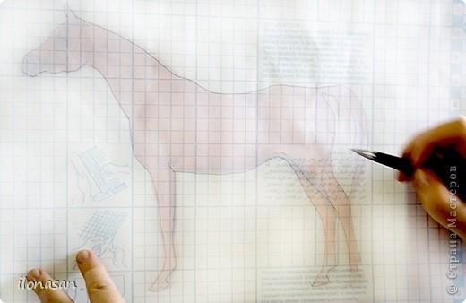Лошадь из шерсти Сложность работы: выше средней Время работы: 15-20 дней Здравствуйте, Дорогой любитель лошадей и творчества! Предлагаю сделать своими руками скульптурную лошадь из шерсти. Общая высота Златы 23 см, высота в холке 17 см, длина 25 см. фото 17