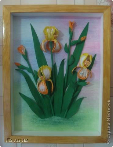 Картина панно рисунок Бумагопластика Квиллинг Ирисы Бумага гофрированная Бумажные полосы фото 8.