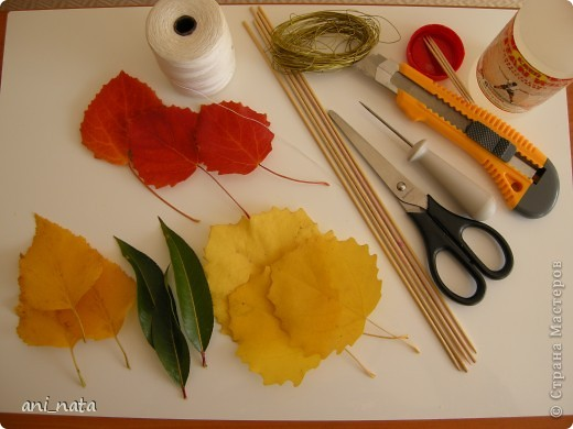 """Вот и осень вступает в свои права.  Эта радушная хозяйка украсила своей красотой всю округу. Каких только красок нет вокруг, какие цветовые переходы задуманы ей. Листья деревьев стоят, необыкновенно красивы.  А еще осень дарит нам особенный цветок – загадку, настоящий символ осени хризантему. Хризантемы долгое время были любимы только в Японии и Китае. Этот цветок является у этих народов  символом солнца, дающего жизнь всему на земле. С цветком  связан в Японии один из самых любимых национальных цветочных народных праздников - Праздник хризантем. История этого праздника началась в 1186 году, когда при дворе императора впервые отметили праздник девятой луны. А в 1211 году его начали отмечать  9-го чиста 9-го месяца по лунному календарю  - выбор даты был не случаен: девятка в восточной традиции считается счастливым числом, а две девятки подряд (спрятанные в названии праздника) означают """"долголетие"""". Поскольку хризантема является символом долголетия, то позже праздник получит второе имя - Праздник хризантем Очень жаль, что пройдет еще совсем немного времени и вся эта красота уйдет, не оставляя следа.   Каждый из нас может попробовать сохранить красоту осени, и порадовать себя и других букетом солнечных хризантем из  листьев деревьев.   фото 2"""