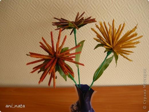 """Вот и осень вступает в свои права.  Эта радушная хозяйка украсила своей красотой всю округу. Каких только красок нет вокруг, какие цветовые переходы задуманы ей. Листья деревьев стоят, необыкновенно красивы.  А еще осень дарит нам особенный цветок – загадку, настоящий символ осени хризантему. Хризантемы долгое время были любимы только в Японии и Китае. Этот цветок является у этих народов  символом солнца, дающего жизнь всему на земле. С цветком  связан в Японии один из самых любимых национальных цветочных народных праздников - Праздник хризантем. История этого праздника началась в 1186 году, когда при дворе императора впервые отметили праздник девятой луны. А в 1211 году его начали отмечать  9-го чиста 9-го месяца по лунному календарю  - выбор даты был не случаен: девятка в восточной традиции считается счастливым числом, а две девятки подряд (спрятанные в названии праздника) означают """"долголетие"""". Поскольку хризантема является символом долголетия, то позже праздник получит второе имя - Праздник хризантем Очень жаль, что пройдет еще совсем немного времени и вся эта красота уйдет, не оставляя следа.   Каждый из нас может попробовать сохранить красоту осени, и порадовать себя и других букетом солнечных хризантем из  листьев деревьев.   фото 22"""
