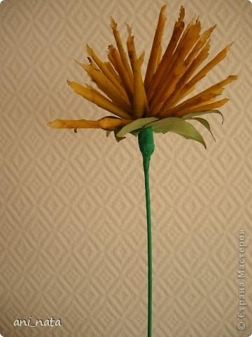 """Вот и осень вступает в свои права.  Эта радушная хозяйка украсила своей красотой всю округу. Каких только красок нет вокруг, какие цветовые переходы задуманы ей. Листья деревьев стоят, необыкновенно красивы.  А еще осень дарит нам особенный цветок – загадку, настоящий символ осени хризантему. Хризантемы долгое время были любимы только в Японии и Китае. Этот цветок является у этих народов  символом солнца, дающего жизнь всему на земле. С цветком  связан в Японии один из самых любимых национальных цветочных народных праздников - Праздник хризантем. История этого праздника началась в 1186 году, когда при дворе императора впервые отметили праздник девятой луны. А в 1211 году его начали отмечать  9-го чиста 9-го месяца по лунному календарю  - выбор даты был не случаен: девятка в восточной традиции считается счастливым числом, а две девятки подряд (спрятанные в названии праздника) означают """"долголетие"""". Поскольку хризантема является символом долголетия, то позже праздник получит второе имя - Праздник хризантем Очень жаль, что пройдет еще совсем немного времени и вся эта красота уйдет, не оставляя следа.   Каждый из нас может попробовать сохранить красоту осени, и порадовать себя и других букетом солнечных хризантем из  листьев деревьев.   фото 20"""