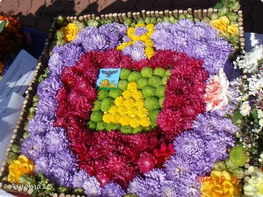 Цветочное панно своими руками из живых цветов 14