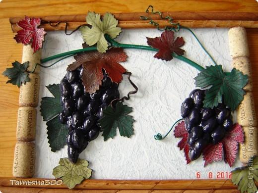 Мастер-класс Праздник осени виноградная гроздь из фисташек Скорлупа ореха фото 1