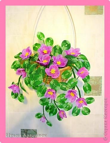 Из бисера висячие цветы вьюнок