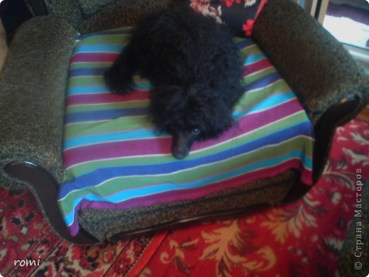Вот таким малепусеньким щеночком Роми( полное имя Андромеда) попала в наш дом. фото 10