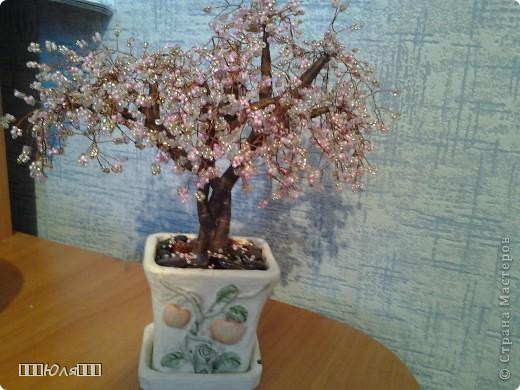 Сакура:) Плела долго, почти два месяца. Использовала бисер четырёх цветов: розовый, персиковый, золотой, серебрянный. Ствол обматывала нитками и покрывала лаком. Высота сакуры вместе с горшочком-25 см. фото 2