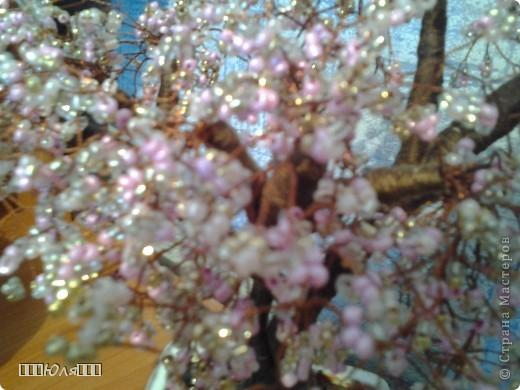 Сакура:) Плела долго, почти два месяца. Использовала бисер четырёх цветов: розовый, персиковый, золотой, серебрянный. Ствол обматывала нитками и покрывала лаком. Высота сакуры вместе с горшочком-25 см. фото 4