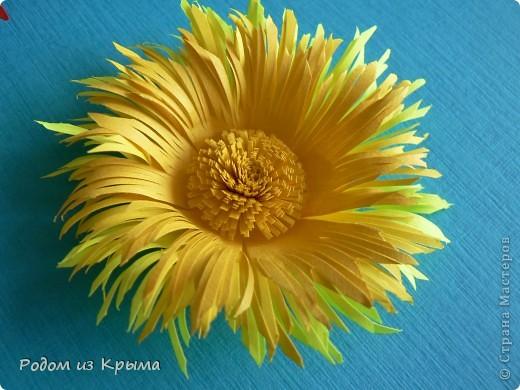 Мастер-класс Квиллинг МК хризантем по-новому Бумага Бумажные полосы Клей фото 15