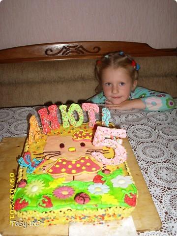 Торт на пять лет девочке своими руками 11