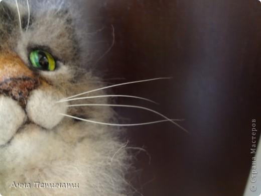 """Котик""""Кныш""""...Сделан на заказ по мотивам """"Тигги"""" фото 11"""