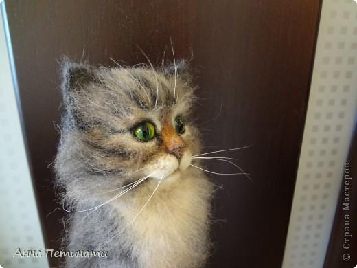 """Котик""""Кныш""""...Сделан на заказ по мотивам """"Тигги"""" фото 10"""