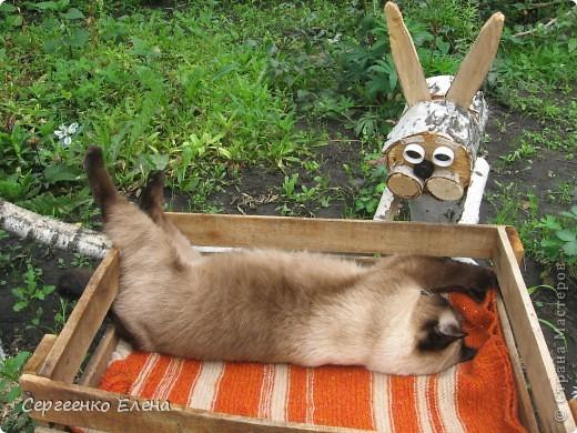 Дорогие жители Страны Мастеров! Это я. Уже знакомый вам котейка - Мурзавейка. Предлагаю вам посмотреть мой (уже пятый) фоторепортаж. На этот раз хочу рассказать как я провёл это лето на даче. фото 26