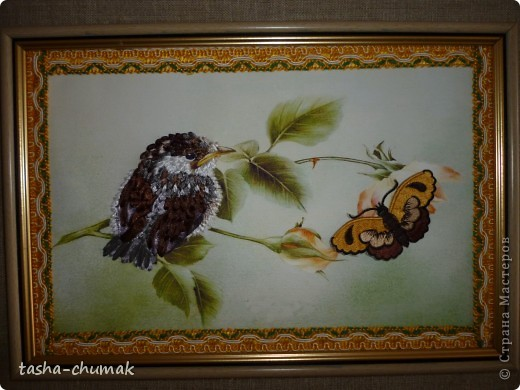 Просто лентами... Просто мааааленький воробушек..... Веточка розы и...бабочка.  фото 1