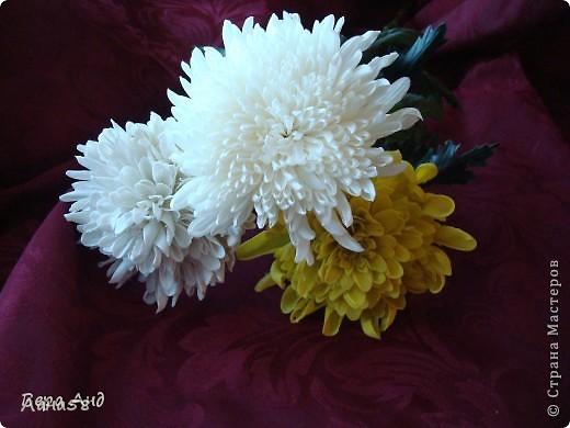 Мастер-класс Флористика Лепка Мини МК по лепке лепестков хризантемы Фарфор холодный фото 19