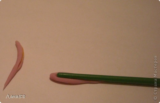 Мастер-класс Флористика Лепка Мини МК по лепке лепестков хризантемы Фарфор холодный фото 21