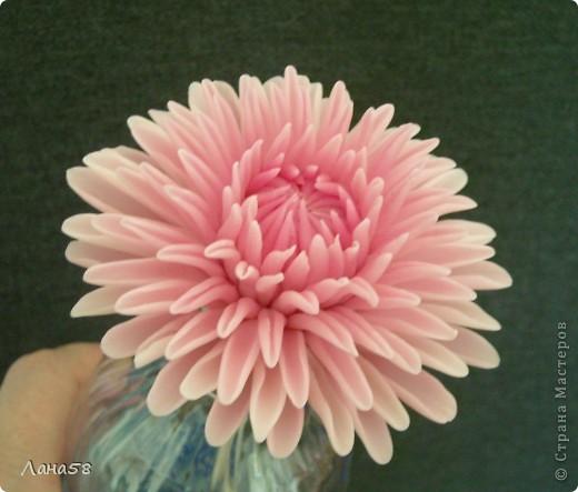 Мастер-класс Флористика Лепка Мини МК по лепке лепестков хризантемы Фарфор холодный фото 1