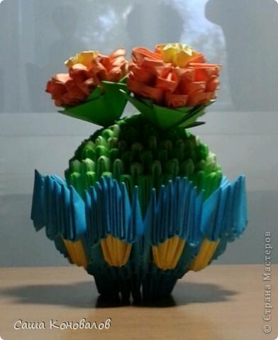 мой вечноцветущий кактус.