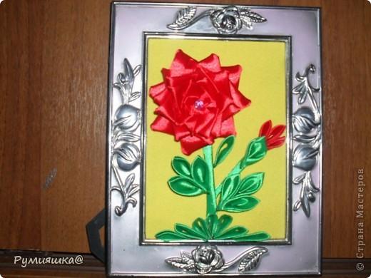 День цветов 2012