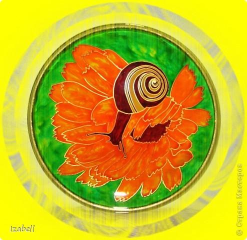 Улитка на цветке календулы