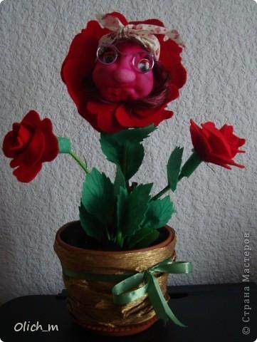 """Знакомтесь! это тетушка Розалия. Родилась хоть и сегодня, но находится в  полном """"расцвете своей розовой жизни"""". а по бокам окружают молодые внучки """"Розочки"""". фото 1"""