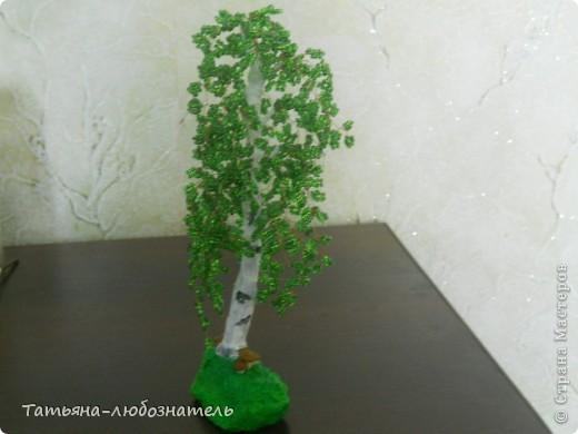 Бонсай топиарий Бисероплетение Бисерные деревья Бисер фото 6.
