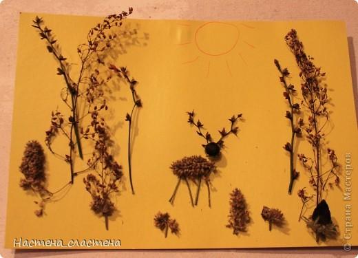 Вот аппликация из осенних травок, олененок гуляет по лесу. фото 1