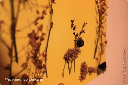 Вот аппликация из осенних травок, олененок гуляет по лесу. фото 2