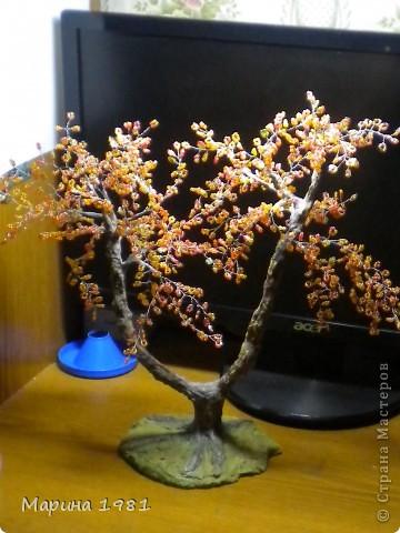 Поделка изделие Бисероплетение Осеннее дерево Бисер фото 1.