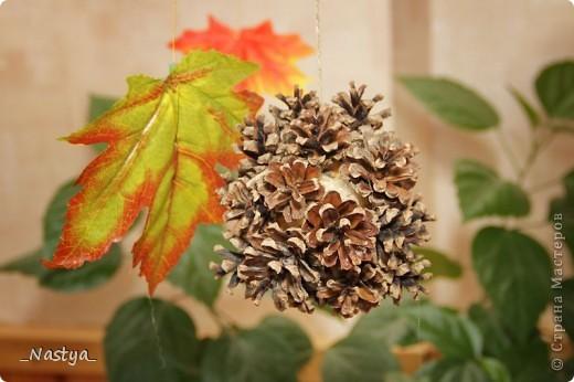 Вот и к нам в класс пришла осень. Сменила весну, которую на лето убрали в шкаф :)) фото 7