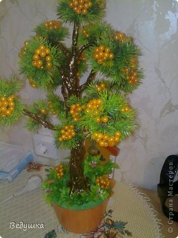 Бонсай топиарий Бисероплетение Бонсай сплошные деревья Бисер фото 14.