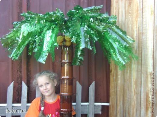 Как правильно сделать пальму