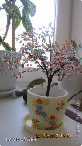 Проба пера. Мое первое деревце-бонсай из бисера. Делала на день рождения моего доктора.  фото 1