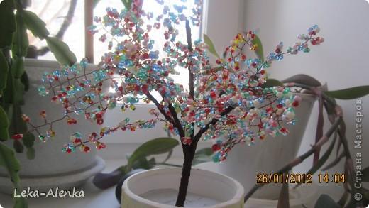 Проба пера. Мое первое деревце-бонсай из бисера. Делала на день рождения моего доктора.  фото 2