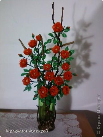 Поделка изделие Бисероплетение Розы из бисера на коряге Бисер фото 1.
