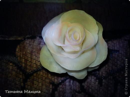 Цветы их холодного фарфора фото 2