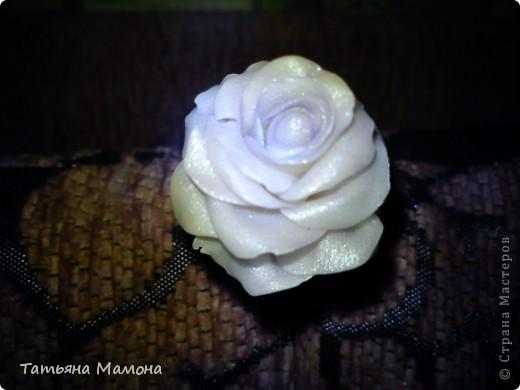 Цветы их холодного фарфора фото 3