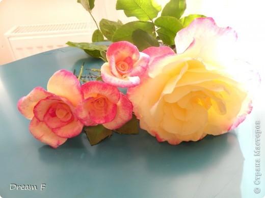 Розовый комплект фото 1