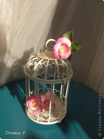 Розовый комплект фото 2