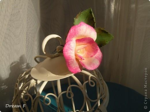 Розовый комплект фото 3