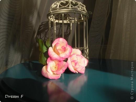 Розовый комплект фото 4