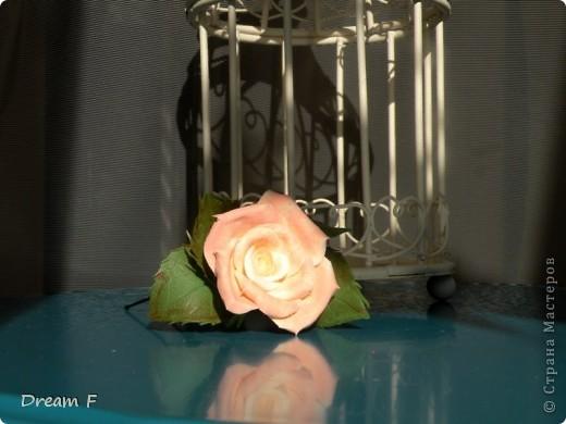 комлект из персиковых роз фото 2