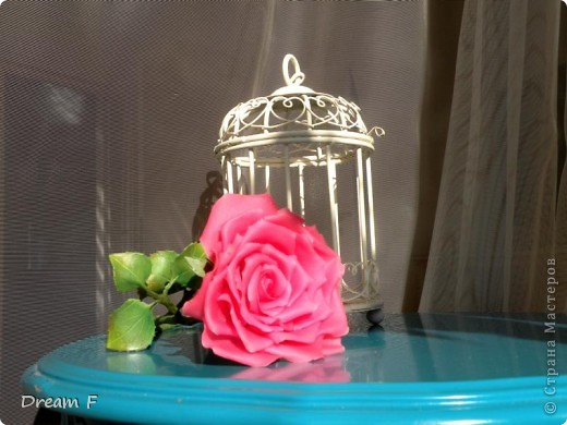 роза из хф фото 1