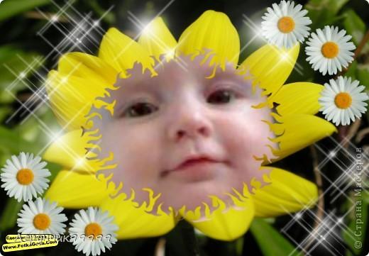 мой  цветочек ******** фото 1