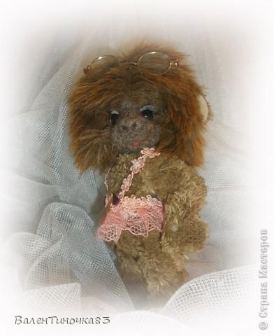 обезьянка Лилу фото 4
