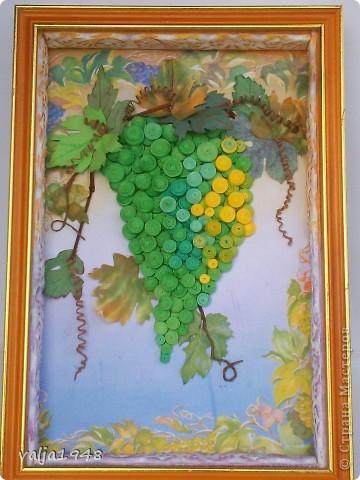 Здравствуйте дорогие жители Страны Мастеров!Я сегодня с подарками для своей подруги, с которой дружим уже более 30 лет!!!Ей очень понравилась моя картина с виноградом и  я для неё его снова вырастила!!!Вот он перед вами! фото 1