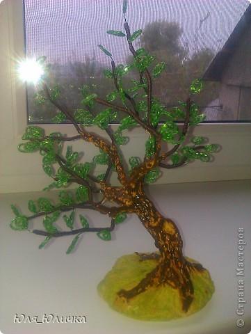 Вот захотелось тоже дерево с дуплом попробовать...  фото 3