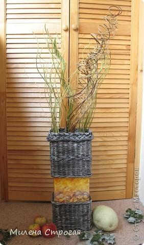 """Добрый день, мастера и мастерицы! В рамках ежегодной выставки """"Осенний букет"""" сделалась такая напольная ваза с ивовой лозой... фото 1"""