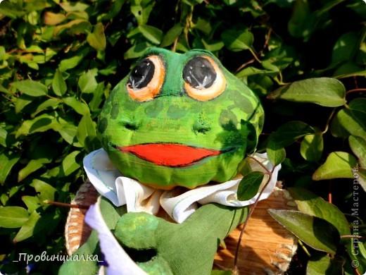 Доброго времени суток, СТРАНА! Знакомьтесь - жаб в жабо, по функциональному назначению -пакетница, по имени Ква-кфанасий  фото 3