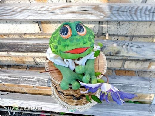 Доброго времени суток, СТРАНА! Знакомьтесь - жаб в жабо, по функциональному назначению -пакетница, по имени Ква-кфанасий  фото 1
