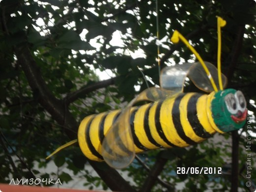 пчелки на винограднике фото 1